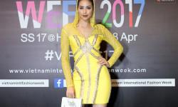 Hoa hậu Phạm Hương, Đặng Thu Thảo rực rỡ trên thảm đỏ thời trang