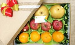 Golden Ant - địa chỉ cung cấp trái cây nhập khẩu uy tín và chất lượng