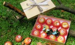Golden Ant đón năm mới với giỏ quà trái cây Tết