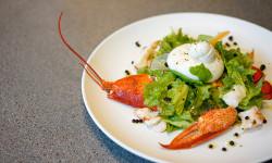 'NAMO Tuscan Grill ra mắt thực đơn mới đậm đà hương vị vùng Tuscany