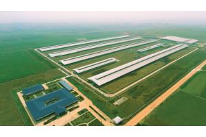 Vinamilk mở rộng đầu tư vào miền Tây Nam Bộ